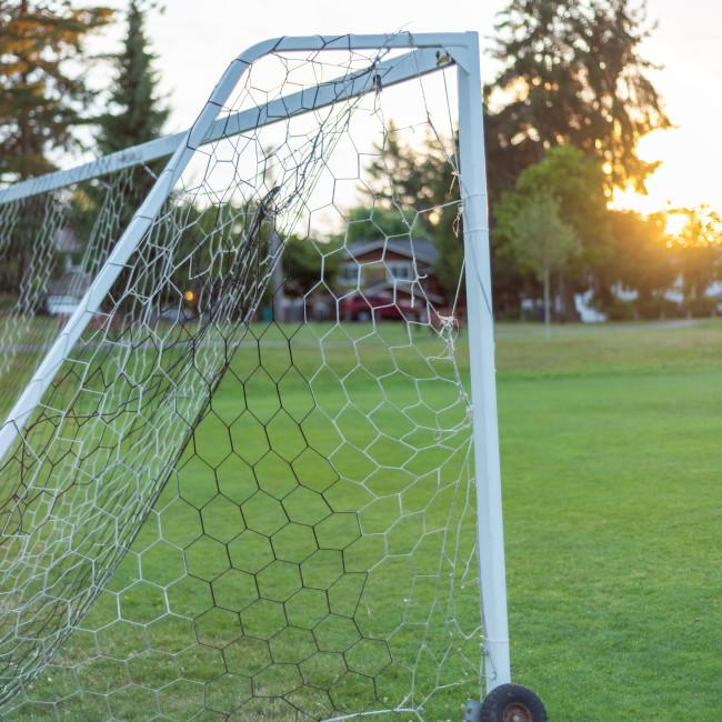 soccer goal net on field of grass l32FnywF7Fk-unsplash steve-smith 650.jpg